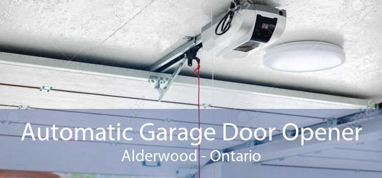 Automatic Garage Door Opener Alderwood - Ontario