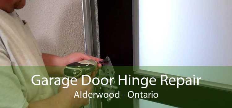 Garage Door Hinge Repair Alderwood - Ontario