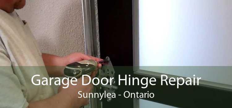 Garage Door Hinge Repair Sunnylea - Ontario