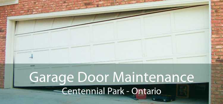 Garage Door Maintenance Centennial Park - Ontario