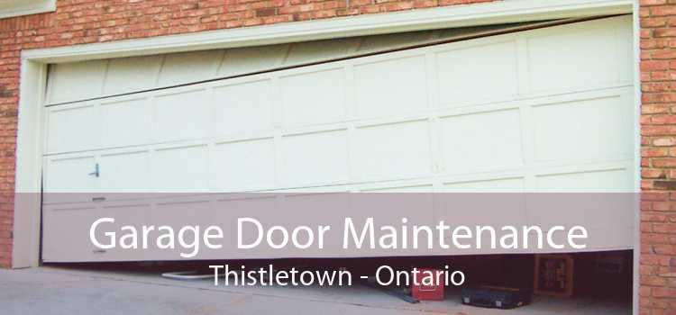 Garage Door Maintenance Thistletown - Ontario