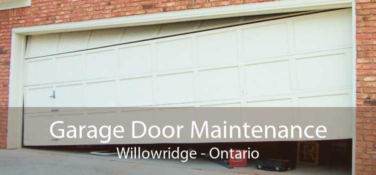 Garage Door Maintenance Willowridge - Ontario