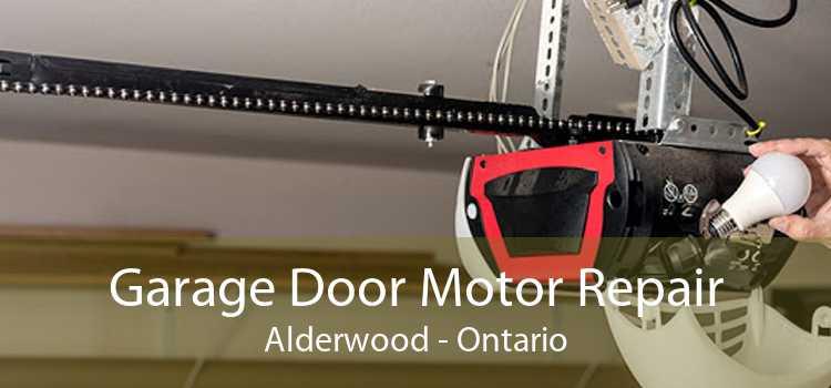 Garage Door Motor Repair Alderwood - Ontario