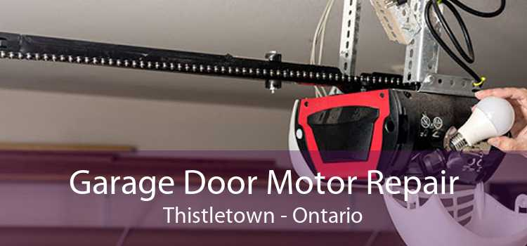 Garage Door Motor Repair Thistletown - Ontario