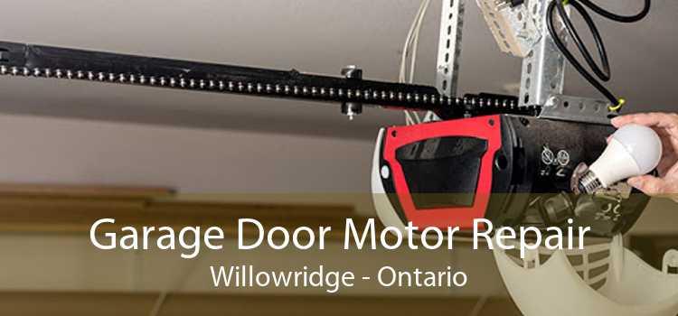 Garage Door Motor Repair Willowridge - Ontario