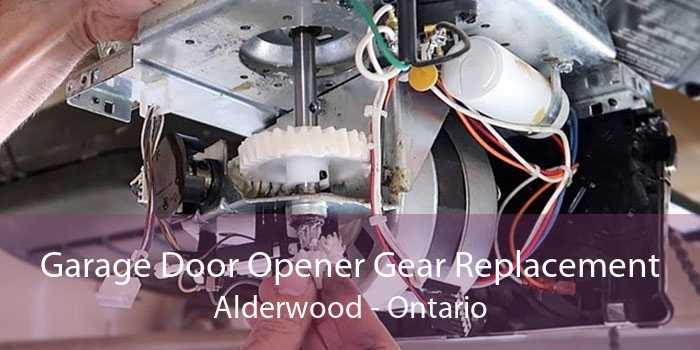 Garage Door Opener Gear Replacement Alderwood - Ontario