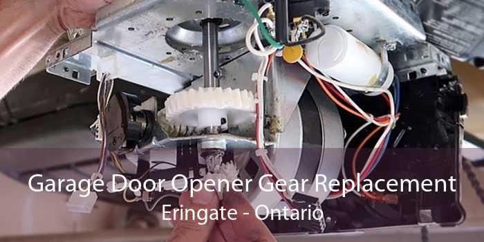 Garage Door Opener Gear Replacement Eringate - Ontario