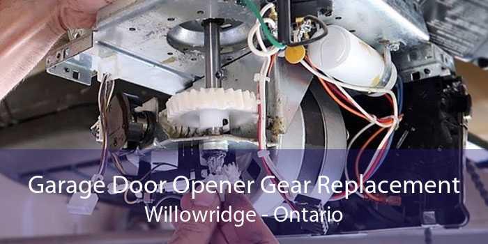Garage Door Opener Gear Replacement Willowridge - Ontario