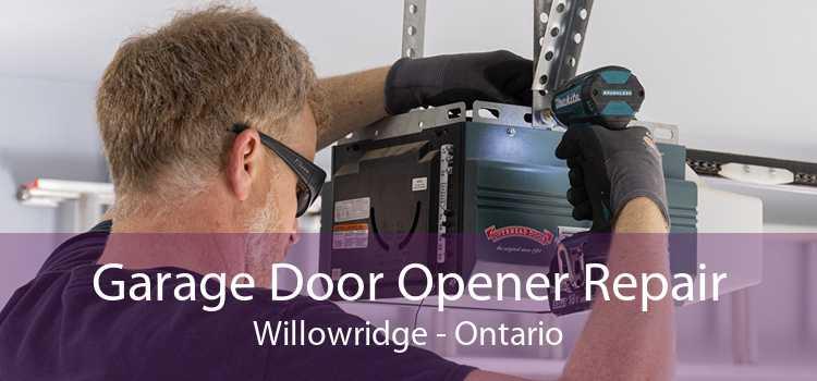 Garage Door Opener Repair Willowridge - Ontario