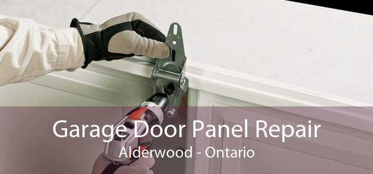 Garage Door Panel Repair Alderwood - Ontario