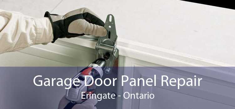 Garage Door Panel Repair Eringate - Ontario