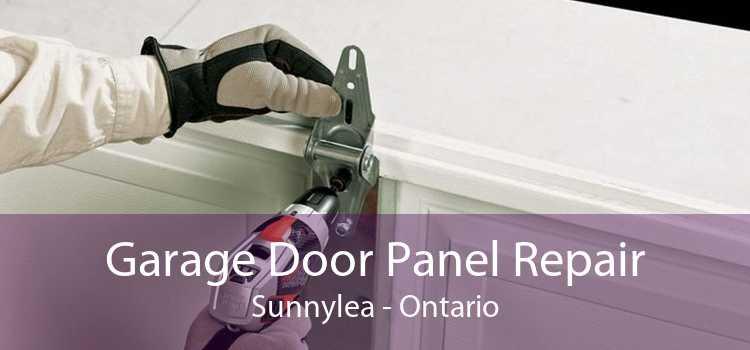 Garage Door Panel Repair Sunnylea - Ontario