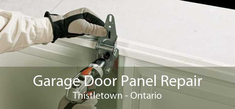Garage Door Panel Repair Thistletown - Ontario