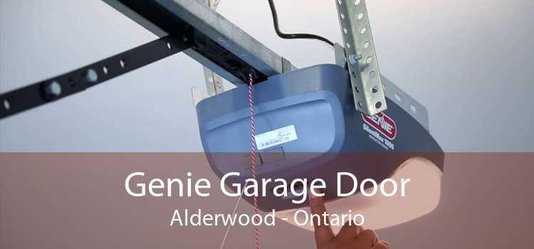Genie Garage Door Alderwood - Ontario