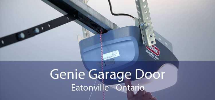 Genie Garage Door Eatonville - Ontario