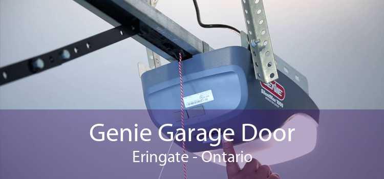 Genie Garage Door Eringate - Ontario