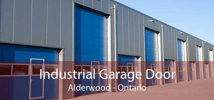 Industrial Garage Door Alderwood - Ontario